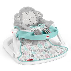 Fisher-Price Sweet Snugamonkey Sit-Me-Up Floor Seat with Tray - R Exclusive
