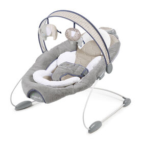 SmartBounce Automatic Bouncer - Townsend.