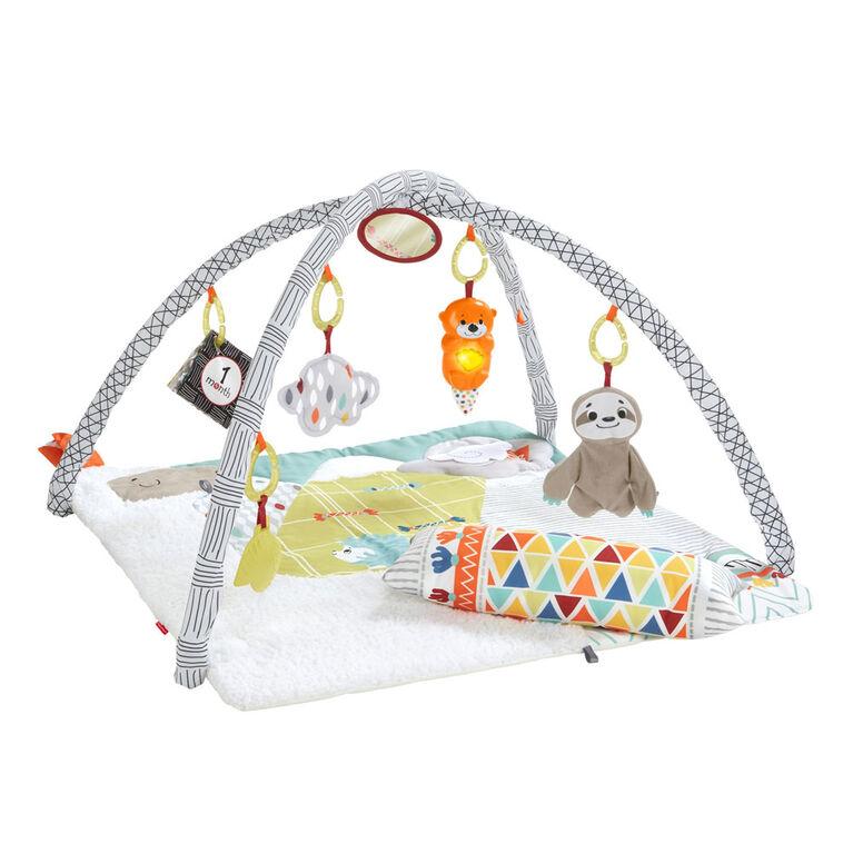 Fisher Price Tapis D Activites De Luxe Eveil Des Sens Babies R