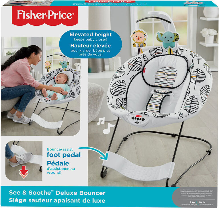 Fisher-Price See & Soothe Deluxe Bouncer