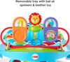 Fisher-Price Deluxe Sit-Me-Up Floor Seat with Toy Tray