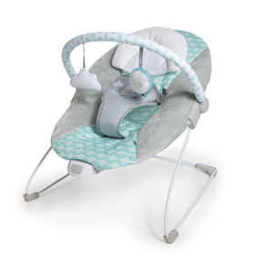 Ingenuity™ Ity by Ingenuity™ Bouncity Bounce™ Vibrating Deluxe Bouncer - Goji™