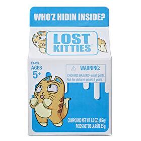 Lost Kitties Boîte surprise - Version anglaise - Les couleurs et les motifs peuvent varier.